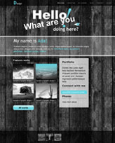 iWeb Template: Black Fence